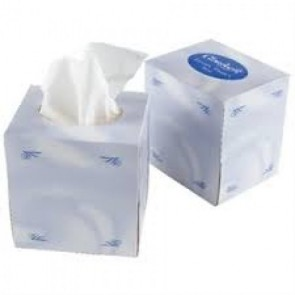 Cubed Facial Tissues 2 ply White 24 x 100