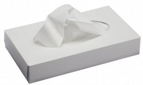 Professional Facial Tissue 2 ply White 36 x 100